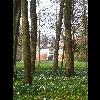P1080688_Parc_Chateau_Rambures_20110327.JPG - image/jpeg