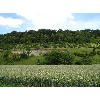 049_Boisbergue_Larris_20070620.jpg - image/jpeg