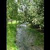 073_Guizancourt_Les_Evoissons_20070821.jpg - image/jpeg