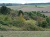 DSc04485_Lafresguimont-St-Martin_nord_larris_20121015 - image/jpeg